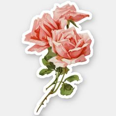 Get your hands on great customizable Rose stickers from Zazzle. Preppy Stickers, Kawaii Stickers, Cute Stickers, Journal Stickers, Scrapbook Stickers, Laptop Stickers, Vintage Roses, Vintage Pink, Aesthetic Roses