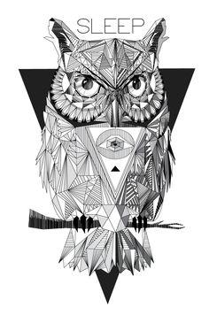 GEOMETRIC OWL on Behance