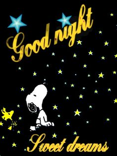 Sweet dreams, good night, may your tomorrow be so bright. Snoopy Love, Charlie Brown And Snoopy, Snoopy And Woodstock, Good Night Hug, Night Time, Morning Light, Good Morning, Good Night Blessings, Joe Cool