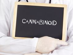 Read about how finding cannabinoid receptors on muscle fascia might lead to a better understanding of, and new ways to manage, fibromyalgia pain.