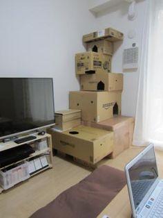Cat Construction, Cat Castle, Homemade Cat Toys, Diy Cat Tree, Cat Towers, Cat Playground, Good Environment, Cat Condo, Cat Room