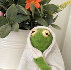 Image about cute in kermit by carmyna ✿ on We Heart It Sapo Kermit, Sapo Meme, Dankest Memes, Funny Memes, Hilarious, Frog Meme, Kermit The Frog, Quality Memes, Wholesome Memes