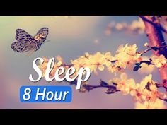 Sleep & Dream Zone is dedicated to bringing you the best and most effective sleep music to help you and your family get the rest you deserve. Whether you wan...