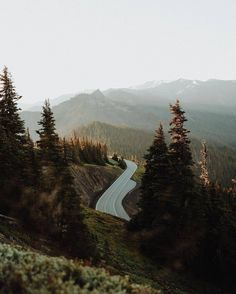 Ooooh, a foggy mountain in the fall. I love the winding road, the tall trees, and the promise of a beautiful day that this picture encapsulates. Let's all go exploring.