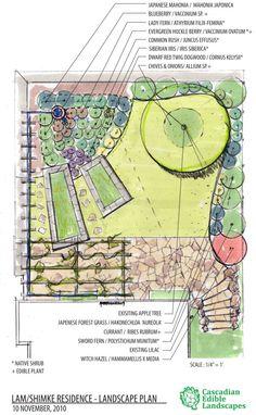 Rain Garden we built in Seattle, featuring some interesting ...