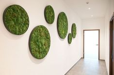 Our Sunny green moss wall frames are ideal to give live life to any space that you want to embelish with the beauty of nature | Find them at Forest Homes #homedecor #homedecorideas #natureinspired #greenlife #green #indoorgarden #indoorplants #decor #natureinspired #naturedesign #design