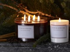 An irresistible new scented candle for winter. Coeur d'Hiver is an opulent hand-poured candle mingling rich notes of spicy clove and cinnamon with a hint of sweet orange zest. Ideal for casting an atmospheric mood over winter festivities with friends. Why not surround the larger four wick version with Christmas evergreens to create an elegant table #MerryBrissmas