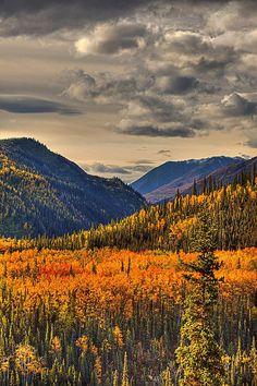 ~~Autumn At Riley Creek Denali National Park, Alaska by Lloyd Nielsen~~