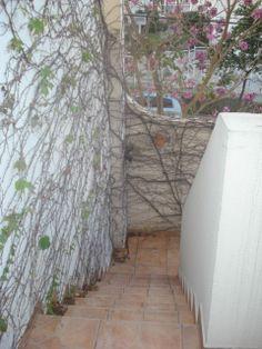 escada para o jardim - outside architecture - garden - maison