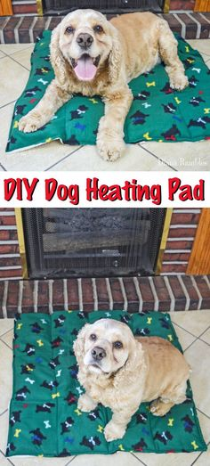 DIY Dog Heating Pad Tutorial - Make this Dog Heating Pad to keep your pooch warm during the cold of the winter. Your pet will love this heating bed. AD dog DIY Dog Heating Pad Make With a Fleece Blanket Warm Dog House, Heated Dog Bed, Outside Dogs, Dog Hacks, Hacks Diy, Diy Dog Bed, Animal Projects, Diy Projects, Diy Stuffed Animals