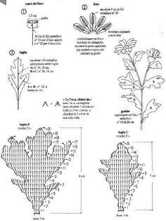 Schema foglie margherita