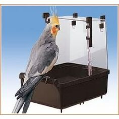 Bañera Grande Jaulas Pájaros