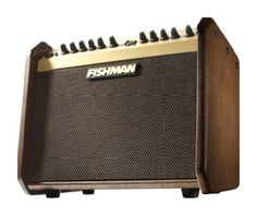 Fishman Loudbox Mini Acoustic Guitar Amplifier: Take this light and portable acoustic amp with you wherever you go. It features 60 watts of acoustic power and digital reverb and chorus effects.