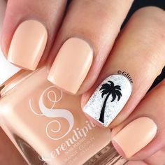 It's been a while since I wore some nude nails and I really love this pretty shade by @serendipitypolish!! And that palm tree is making me want to go on holiday and escape the cold weather here so bad!! @serendipitypolish Love Peach & Sandy Feet @serendipitypolish Holo-Day Lights @appeal4 Hollis Milkweed @whatsupnails palm tree stencil @serendipitypolish Finishing Touch Topcoat by glittr
