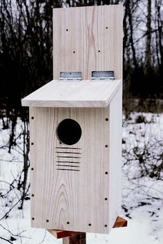 How to build a nest box for a screech owl.