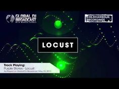 Purple Stories - Locust - YouTube
