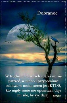 Humor Videos, Good Night, Good Morning, Humor Grafico, Quotes About God, About Me Blog, Day, Google, Humor Deutsch