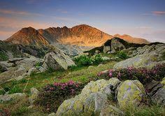 Retezat National Park: Romania's Most Precious Wilderness - Uncover Romania Romania Facts, Romania Tours, Adventure Awaits, Adventure Travel, Romania People, Visit Romania, National Parks Map, Natural Park, Medieval Town
