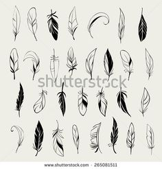 Vector set of different vintage hand drawn feathers - stock vector Feather Sketch, Feather Drawing, Feather Tattoo Design, Forearm Tattoo Design, Feather Art, Feather Tattoos, Small Feather Tattoo, Dandelion Tattoos, Placement Tattoo