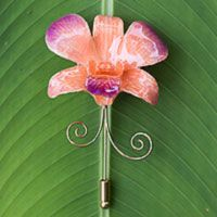 Natural orchid gold-plated stickpin, 'Glorious Dawn'