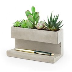 Concrete Desktop Planter Large - View All - Shop By Category - New In