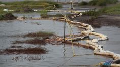 Third major oil spill in a week: Shell pipeline breaks in Texas - http://ontopofthenews.net/2013/04/05/top-news-stories/u-s-a-news/third-major-oil-spill-in-a-week-shell-pipeline-breaks-in-texas/