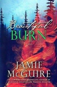 Janise, Com ou Sem Crise: Beautiful Burn