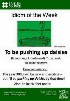 To be pushing up daisies