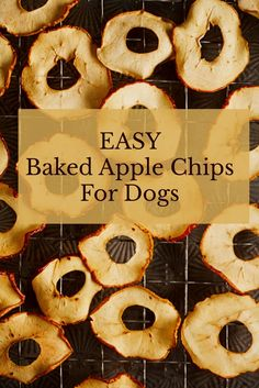 Wash and dry apple. Slice them into slices, removing core and seeds. Place the apple slices on a sheet of parchment paper on a baking sheet. Sprinkle with cinnamon. Bake at 200 degrees for 1 hour. Flip and bake for another hour. Allow to cool in the oven. #dogtreats #bakeddogtreats #easydogtreats #diy #apples #appleslices #bakedapples