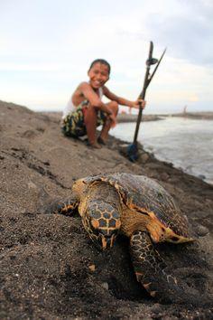 The turtle and the boy by Eddy Wegrzyn on 500px