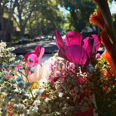#flowerswhiledriving V street and somewhere in the teens