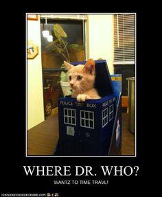WHERE DR. WHO?