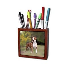 Dogs Pitbull - American Pit Bull Terrier - Tile Pen Holders-5 inch tile pen holder. American Pit Bull Terrier Tile Pen Holder is measuring 5w x 5h x 2d. Made from high quality solid mahogany wood with satin finish and one 4.25 commercial grade mirror gloss ceramic tile. Looks great on a desk or counter top with a full color custom imaged tile.