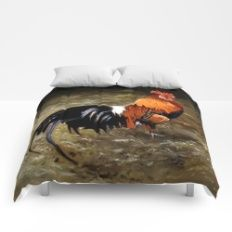 Gallo/Galo/Rooster Comforters