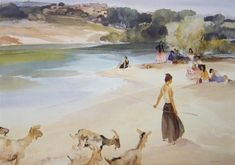 Gypsies and Goats - Languedoc