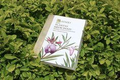 ebook Plantas Medicinais