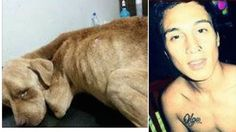 Heartless man ties recently adopted dog in basement, leaves the pet to starve for weeks! Sign Now!