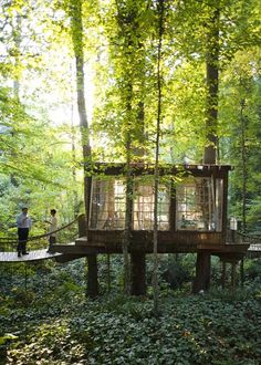 Cute little wood retreat - tree house architecture
