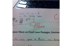 Should have studied more to save the bear. 33 Teachers Who Are Way Funnier Than Their Students