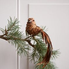 "A trailing tail of natural feathers adorns this sweet bird ornament, each one made from a natural pine cone and affixed with a clip for easy decorating.- Pinecone, feather, polyfoam, metal clip- Indoor use only- Imported2.8""H, 1.8""W, 7.9""L"