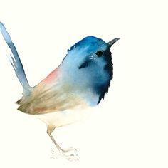 Dunkelblauer Singvogel Fine Art Druck nach Original Aquarell