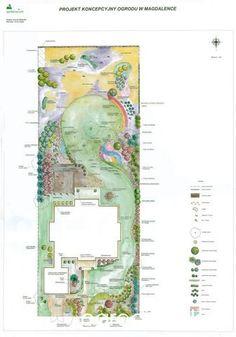 Ogród w lesie - strona 3 - Forum ogrodnicze - Ogrodowisko
