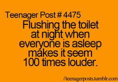 """Shhh, toilet, you're going to wake everyone up."" All the time"