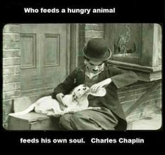 Charlie Chaplin with pit bull. Biddy Craft