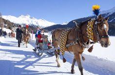 Schlitteta St. Moritz