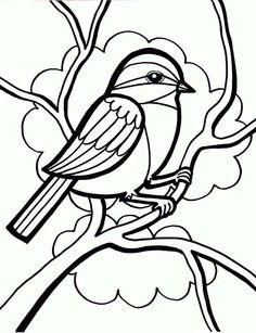 drawing a little cute bird coloring page