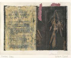 Victoria Crowe- plant memories National Portrait Gallery, Art Journals, Crow, Collage Art, Landscape Paintings, Vintage World Maps, Art Ideas, Mixed Media, Plant