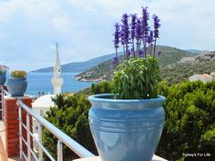 View From Samphire Restaurant Terrace, Kalkan, Turkey Kalkan Turkey, Turkey Travel, Travel Memories, Istanbul Turkey, Antalya, Planet Earth, Wonderful Places, Places To See, Wander