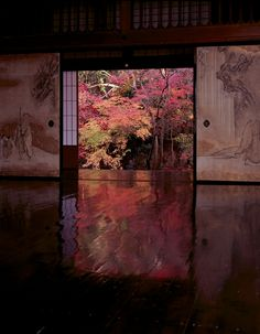 Pinterest - Beauty of Japan via Searching Hearts