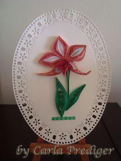 Carla Prediger: Orquídea
